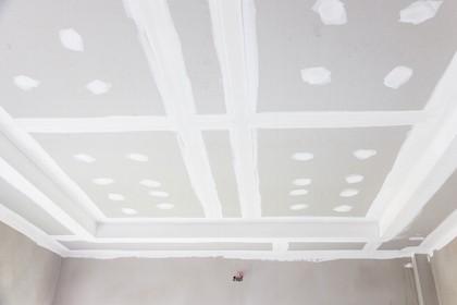 plasterboard ceiling repair process in Albany region