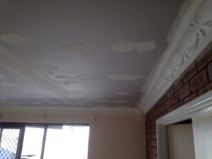 southern ceiling repair in cornice