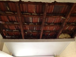 Southern Ceiling Repairs
